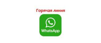 Горячая линия WhatsApp