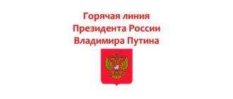 Горячая линия Президента России Владимира Путина