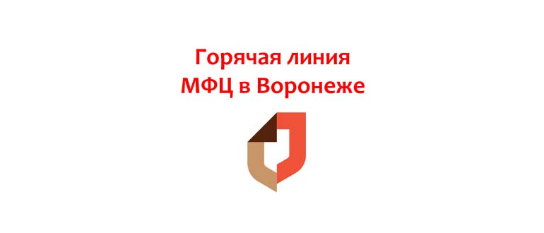 Горячая линия МФЦ в Воронеже