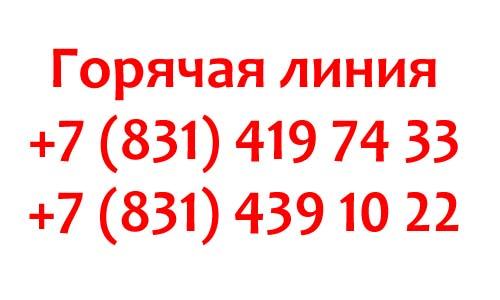 Контакты губернатора Нижегородской области