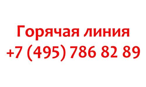 Контакты партии Единая Россия