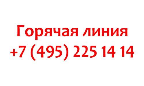 Контакты центров услуг для бизнеса