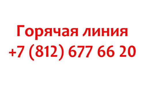 Контакты Well Telecom