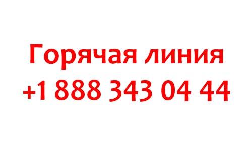 Контакты Аваст